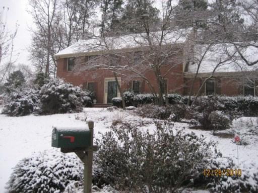 White Christmas, 2010
