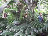 Fucua Conservatory