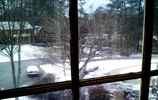 Frozen snowy siberian morning emerges..