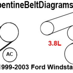 Ford Serpentine Belt Diagram 2002 Euglena Labeled 1999 2003 Windstar