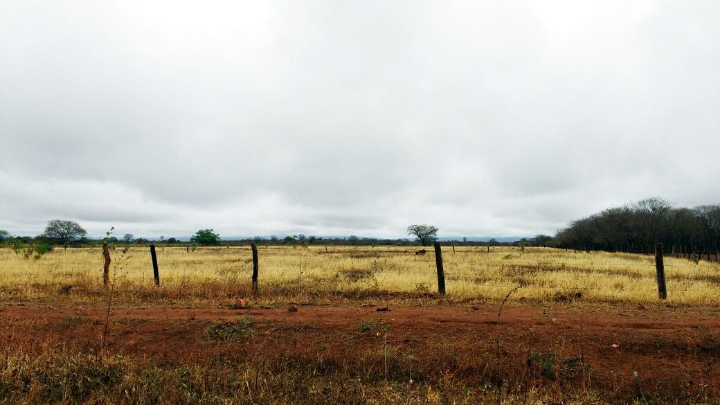 Depois de meses de seca chove em Serra do Ramalho – BA