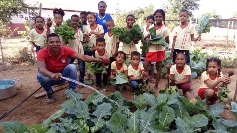 Escola do Povoado de Palmas colhem produtos da horta escolar