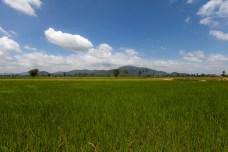 serrini_cambodia-19