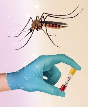 manifestaciones del dengue