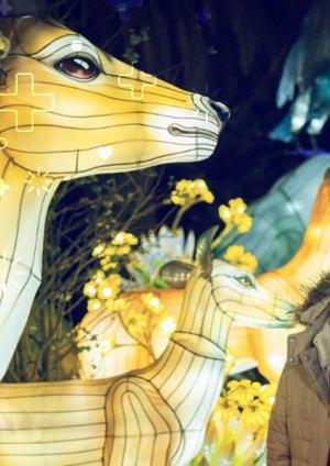 Cinco cosas que debes saber sobre el Festival Brilla Colombia