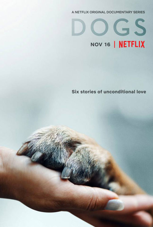 Dogs Documentary Series First Trailer and Netflix Premiere Date