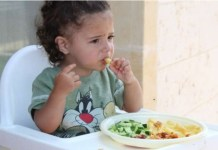 Biasa makan sayur