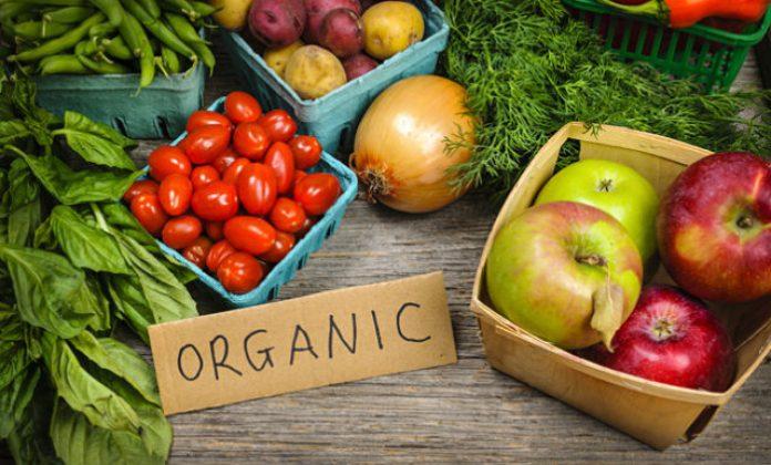 10 Tips Menanam Buah dan Sayur Organik di Rumah