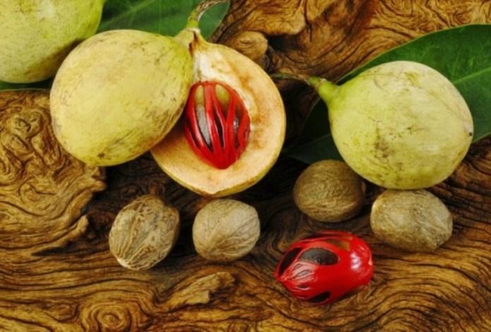 Waspada, 8 Buah-buahan ini Mengandung Racun Berbahaya