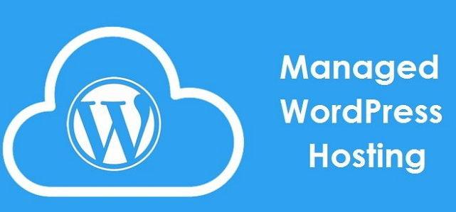 managed wordpress hosting indonesia