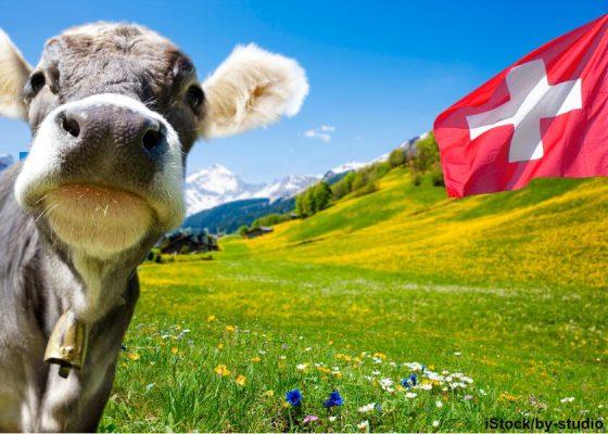 Servicekultur in der Schweiz