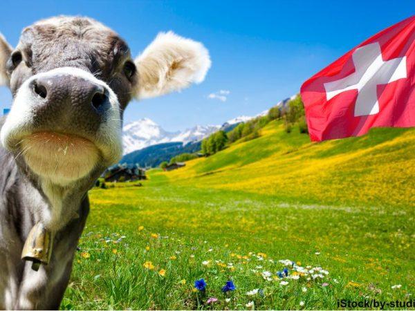 Servicekultur in der Schweiz – Je steiler das Tal, desto merkwürdiger die Leute