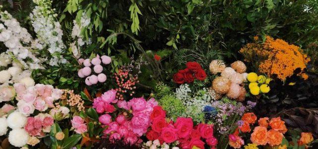 Depozit de flori