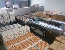 Personal fabrica de oua Germania
