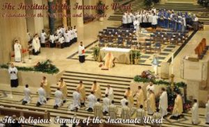 Institute Incarnate Word Ordinations Priesthood Diaconate IVE