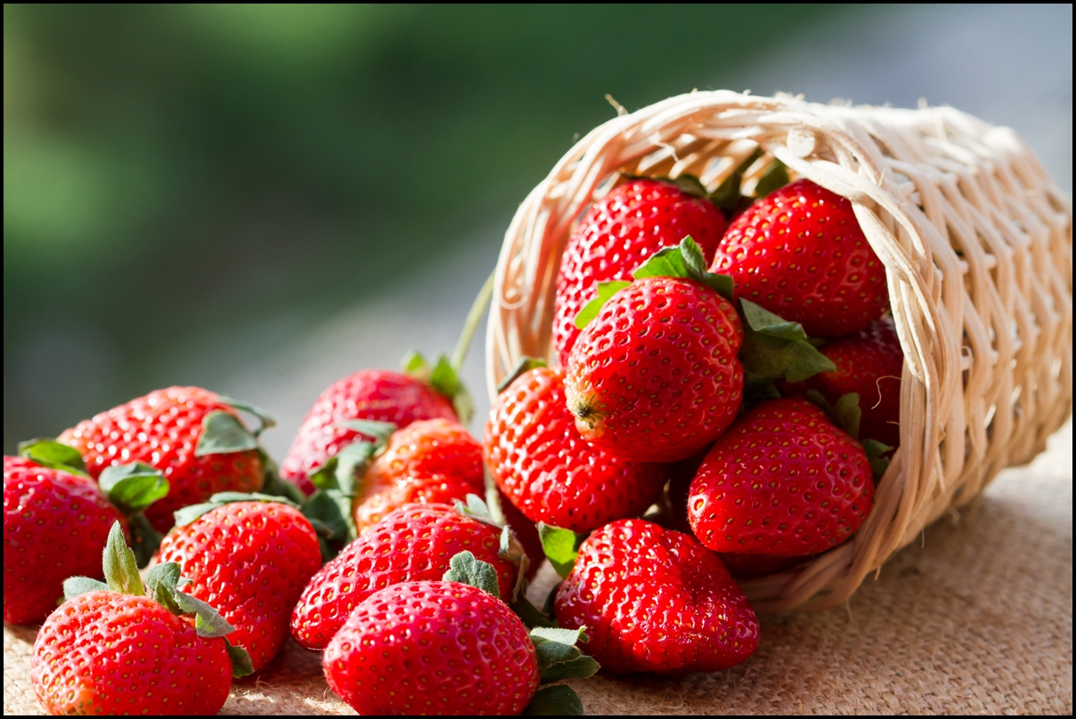 https://i0.wp.com/servingjoy.com/wp-content/uploads/2014/12/A-small-basket-full-of-strawberries-in-natural-background.jpg