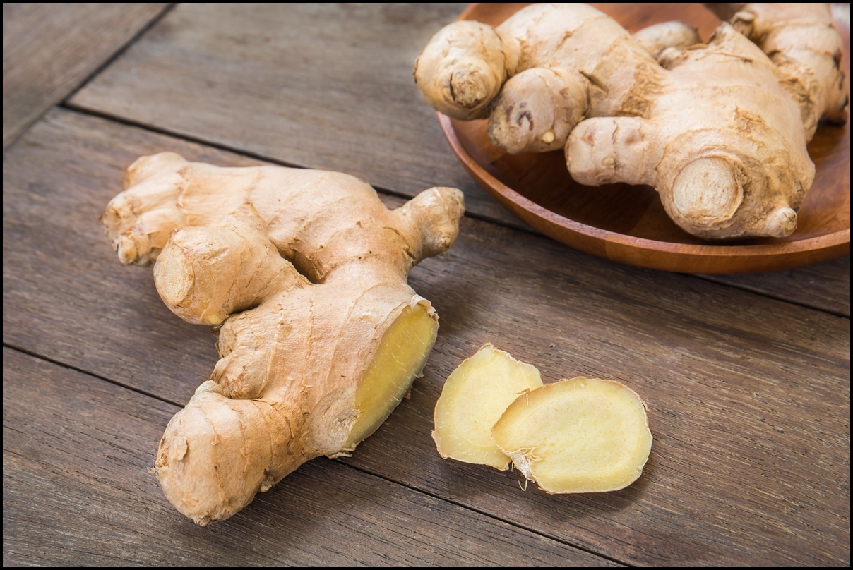Fun Facts Of Ginger