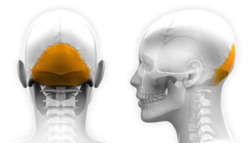 nevralgia occipitala