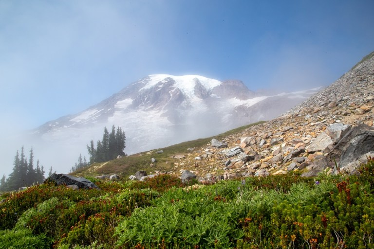 Skyline Trail - Mt. Rainier