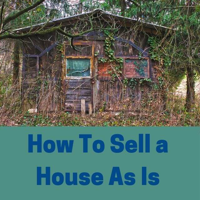 house with weeds - featured blog category