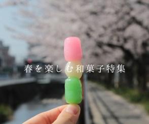 和菓子で春を感じよう!春を楽しむ和菓子特集