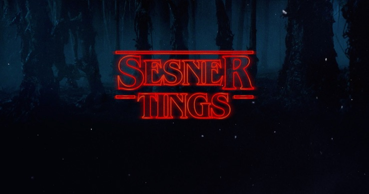 sesner-tings