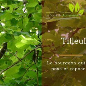 Fiche solution-phyto #27 – Bourgeon de Tilleul