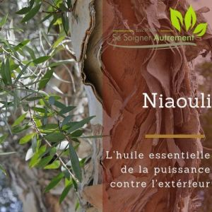 Fiche solution-phyto #28 – Huile essentielle de Niaouli