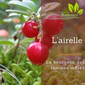 Fiche solution-phyto #51 – Bourgeon d'Airelle