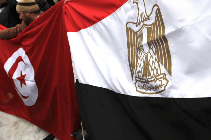 Gradualism and Islamist Experience in Tunisia and Egypt