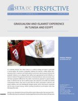 SETA_DC_Perspective_Gradualism_and_Islamist_Experience