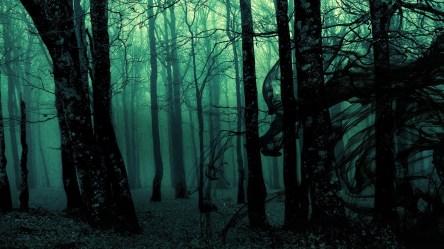 Dark Ghost Gothic Wood Trees Fantasy Wallpaper [1920x1080]