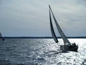 Sirocco silhouette sailing upwind New Year's regatta