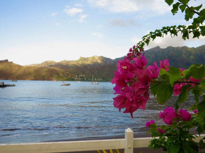 Flowers at the edge of Taiohae Bay
