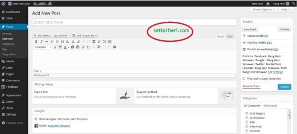 dashboard postingan di wordpress berbayar dot com
