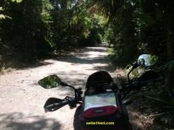 Menuju taman nasional baluran