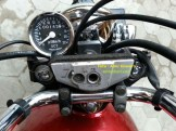 speedo classic di motor tiger