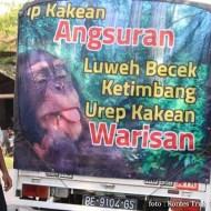Kumpulan Tulisan lucu di kaca samping truk ....hehehe....gokil 2017 (6)