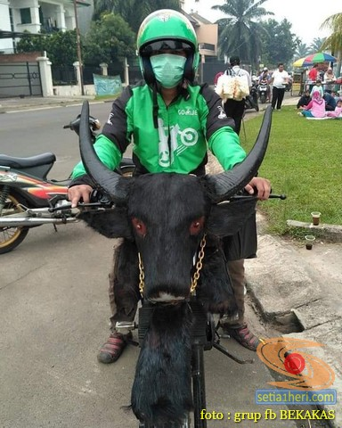 F1zr Modif : modif, Yamaha, Dimodif, Banteng, Brosis..hehehe, Setia1heri.com