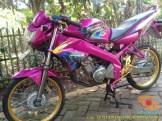 Kumpulan gambar modifikasi Yamaha Vixion warna pink brosis (5)