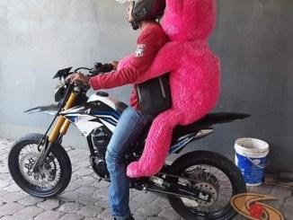 Biker jomblo lagi halu, monggo diintip jok belakang gans... bawa boneka