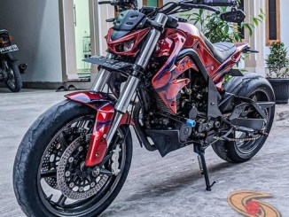 Modifikasi Honda Tiger jadi single fighter