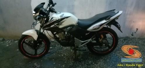 Kumpulan gambar Honda Tiger warna putih modif brosis (1)