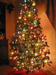 In all shapes and sizes, Christmas trees are full of surprises. Photo courtesy of mixtamusic.com.