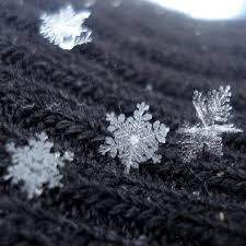 Each one with its own shape, look at how beautiful and whole each snowflake laid. Photo courtesy of pinterest.com.