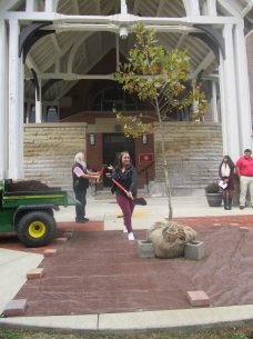 Biology Club President Hannah Hartman shovels dirt onto the tree dedicated to Suzanne Rogers on Oct. 12.