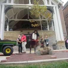 Biology Club Secretary Shreya Sudadi shovels dirt onto the tree dedicated to Suzanne Rogers on Oct. 12.