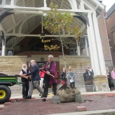 Bernadette Fondy, dean of the school of natural and health sciences, shovels dirt onto the tree dedicated to Suzanne Rogers on Oct. 12.