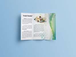 01-trifold-mockup-out-3b
