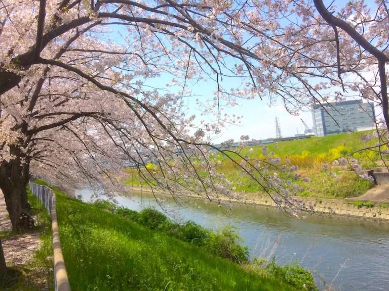 新幹線公園  川